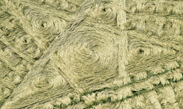 July 2014: Cherington Crop Circle