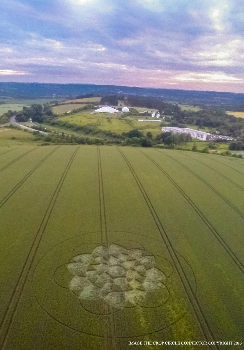 The view down to the Winchester Planetarium from the Chilcomb Down crop circle, 2016. Photograph by the Crop Circle Connector.
