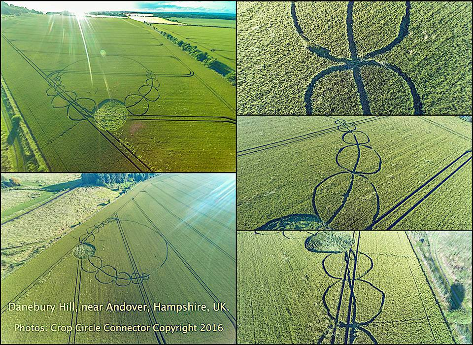 Photograph courtesy of the Crop Circle Connector.
