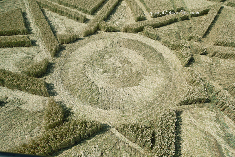 Lay in the Haselor, Warwickshire, crop circle of 2015. Photograph by Steve Alexander / Temporary Temples.