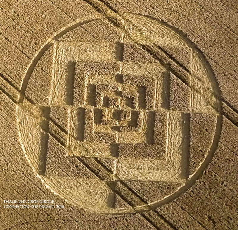 Photograph by the Crop Circle Connector.