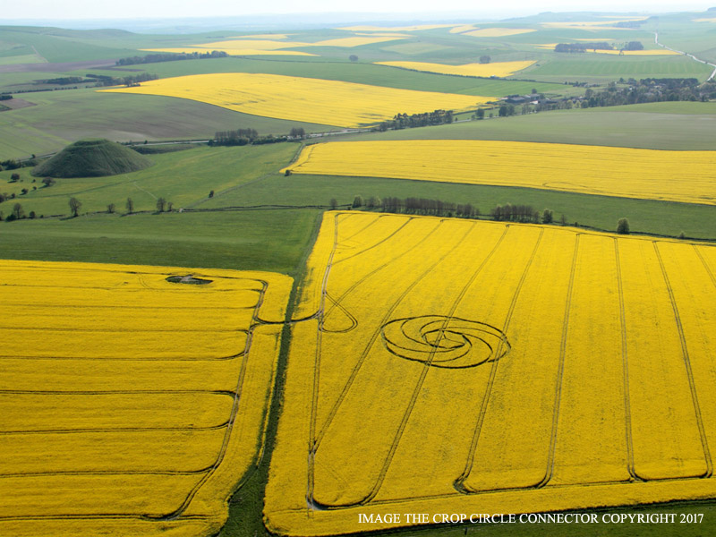 Photo by Crop Circle Connector