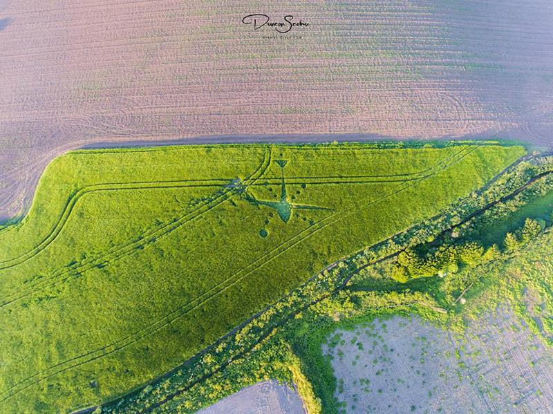 2017 Circles: Venton Farm, Marazion