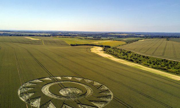 2017 Circles: Longwood Warren, Cheesefoot Head