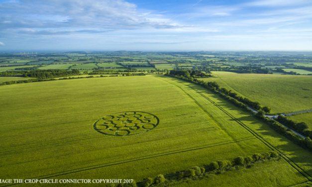 2017 Circles: Woolstone Hill, Woolstone