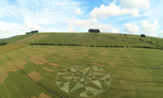 2017 Circles: Hackpen Hill, nr Broad Hinton