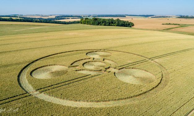 2018 Circles: Coneybury Hill Hoax, Wiltshire