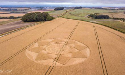 2018 Circles: Hackpen Hill (3), nr Broad Hinton, Wiltshire