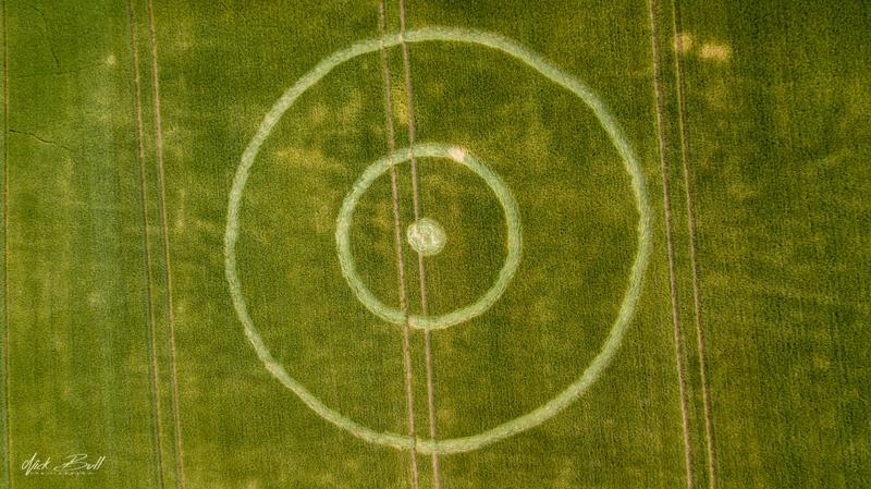 2018 Circles: Pancake Plantation, Alton, Hampshire
