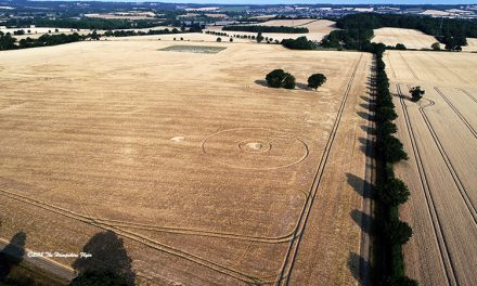 2018 Circles: Wyke Lane, East Worldham, Hampshire