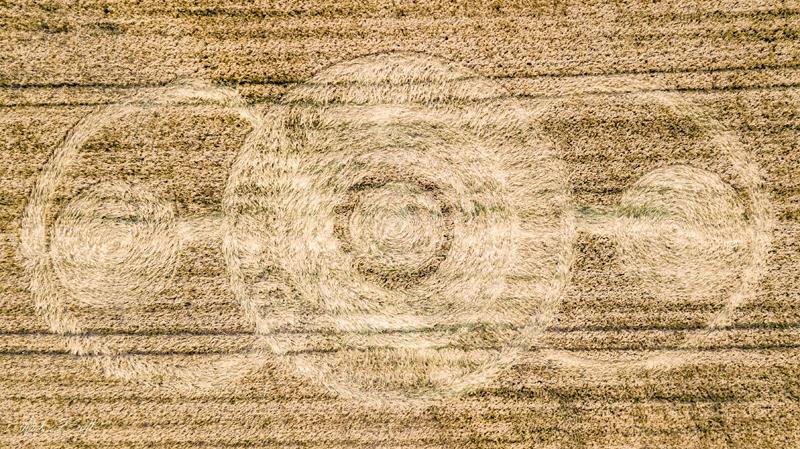 2018 Circles: Norridge Wood, Warminster, Wiltshire