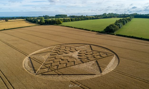 2019 Circles: Cocum Farm, Barton Stacy, Hampshire