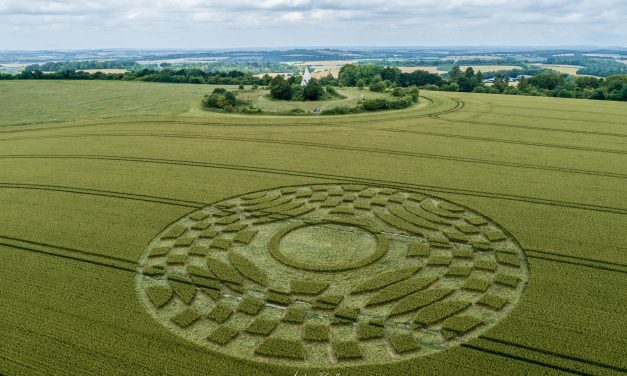 2019 Circles: Farley Mount, Stockbridge, Hampshire
