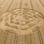 2019 Circles: Nuns Walk, Tufton, Hampshire