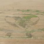 2019 Circles: Grey Alien Hoax, Unknown Location