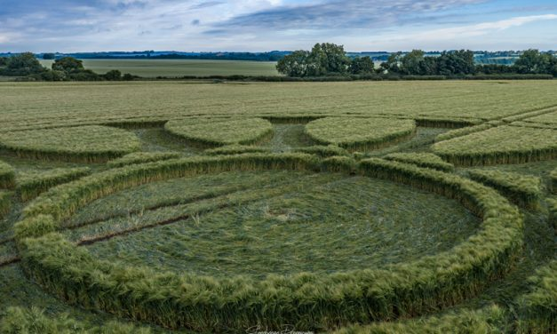 2020 Circles: Barbury Castle, Nr Wroughton, Wiltshire