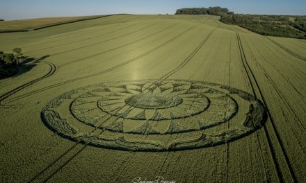 2020 Circles: Smeathe's Plantation, Nr Ogborne St George, Wiltshire