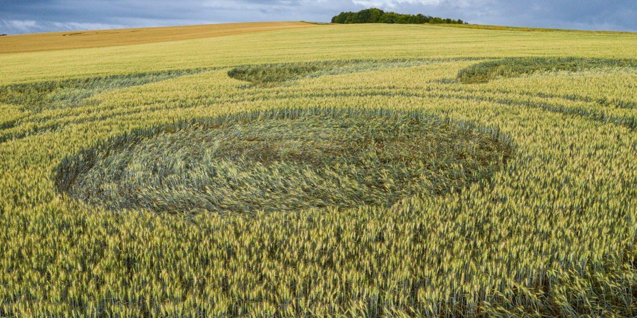 2020 Circles: Etchilhampton (2), Wiltshire