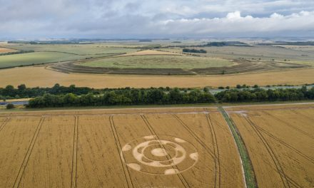 2020 Circles: Yarnbury Castle, Wiltshire
