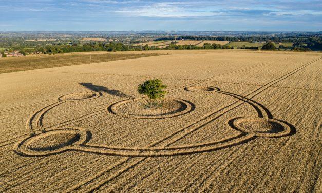 2020 Circles: Potterne (2), Wiltshire