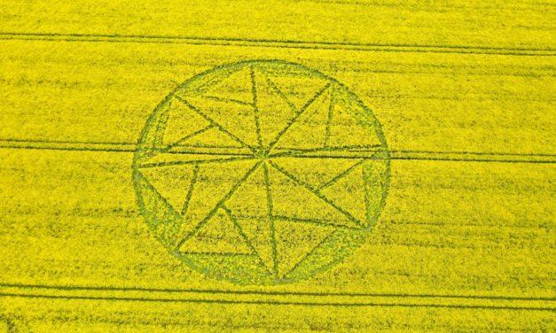 2021 Circles: Stanton St Bernard, Wiltshire