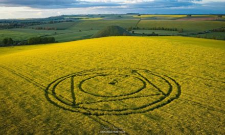 2021 Circles: Silbury Hill, Nr Beckhampton, Wiltshire