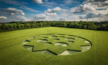 2021 Circles: Crawley Down, Nr Winchester, Hampshire