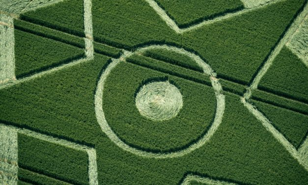 June 2014: Besford Crop Circle