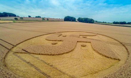 Angry Farmers: Cooks Plantation 2016