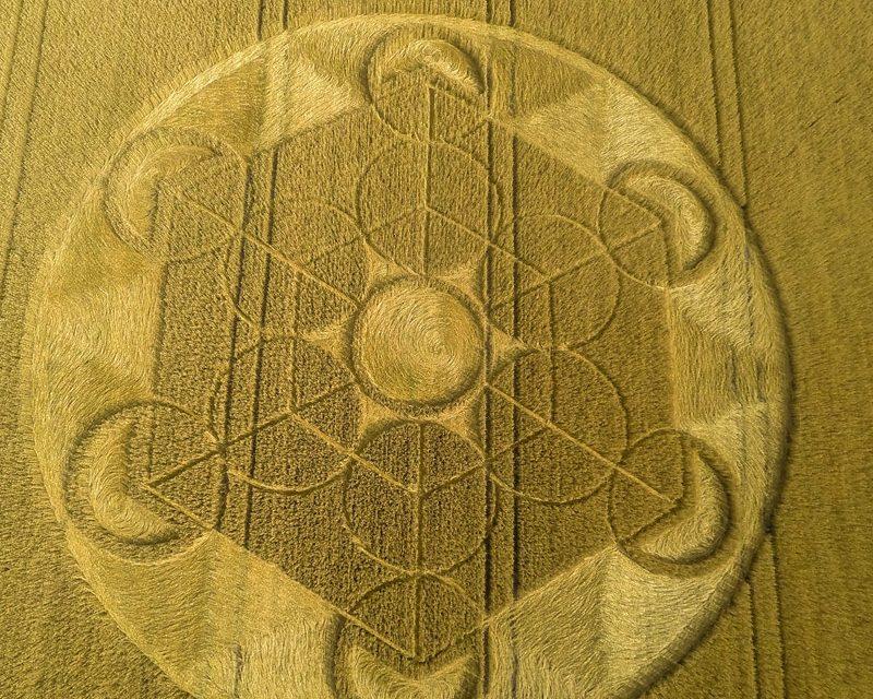 2016 Circles: Nursteed Farm, Devizes