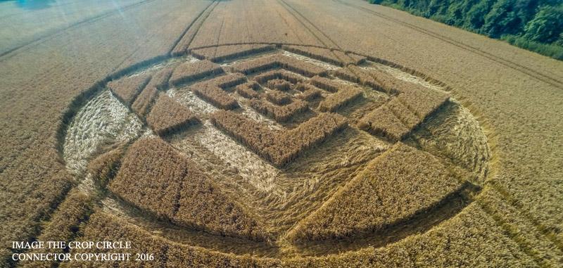 2016 Circles: Sparticles Wood, Chaldon
