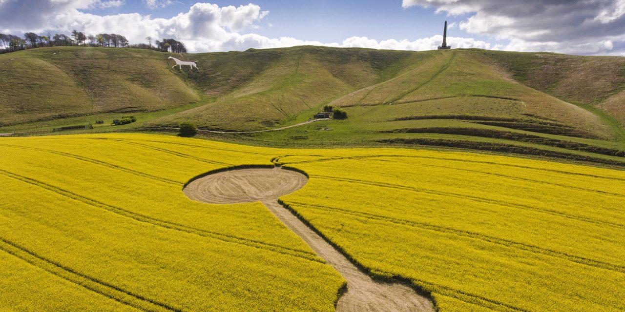 Angry Farmers: Cherhill Circle Cut