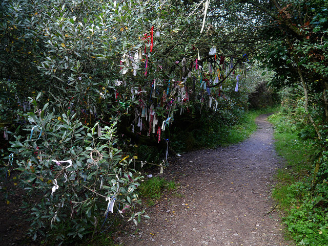 2017 Circles: Madron Holy Well, near Penzance
