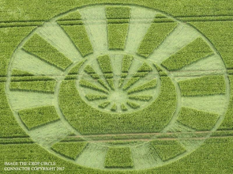 2017 Circles: Oxleaze Copse, Savernake Forest