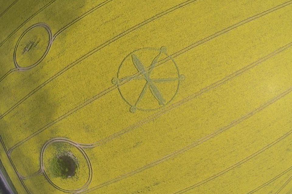 méthodes de création des crop circles... 32089813_483469865402079_7508509359270264832_n-960x640