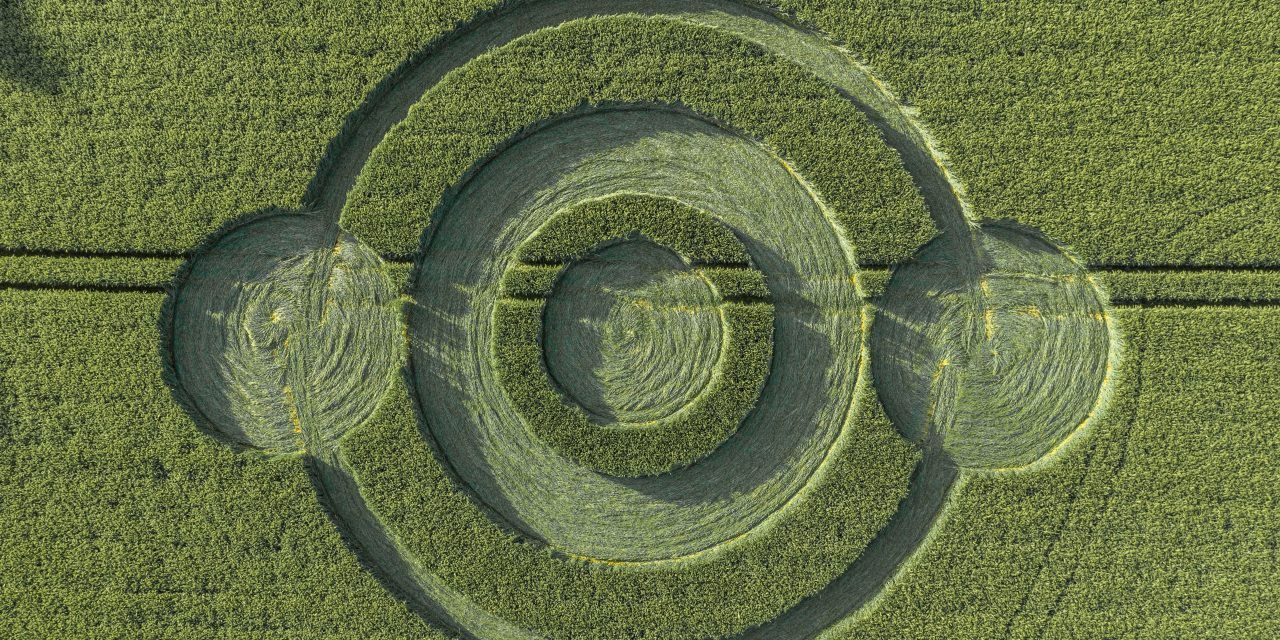 2019 Circles: Norridge Wood, near Warminster, Wiltshire