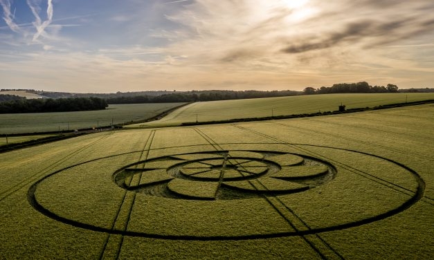 2019 Circles: Belmore Lane, Owslebury, Hampshire
