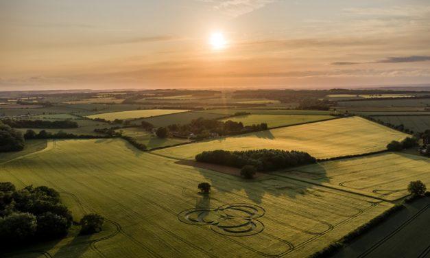 2019 Circles: Long Wood, Littleton, Hampshire