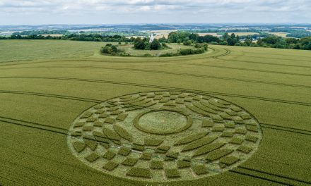2019 Circles: Farley Mount, Stockbridge, Hampshire