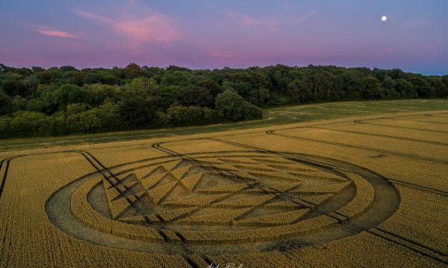 2019 Circles: Rodfield Lane, Tichborne, Hampshire