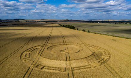 2019 Circles: Etchilhampton Hill, Wiltshire