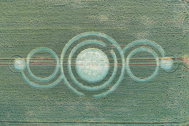 2020 Circles: Hooper's Wood, Dilton Marsh, Wiltshire