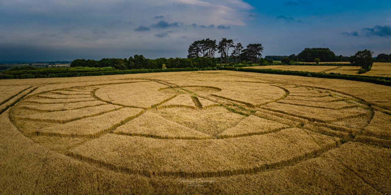 A Conspiracy Against Particular Crop Circles?