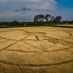 A Conspiracy Against Particular Crop Circles?