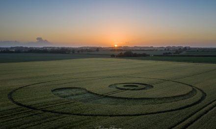 2020 Circles: Berwick Bassett Clump, Winterbourne Monkton, Wiltshire