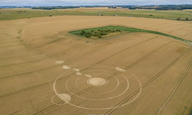 2020 Circles: Luxenborough, Stonehenge, Wiltshire