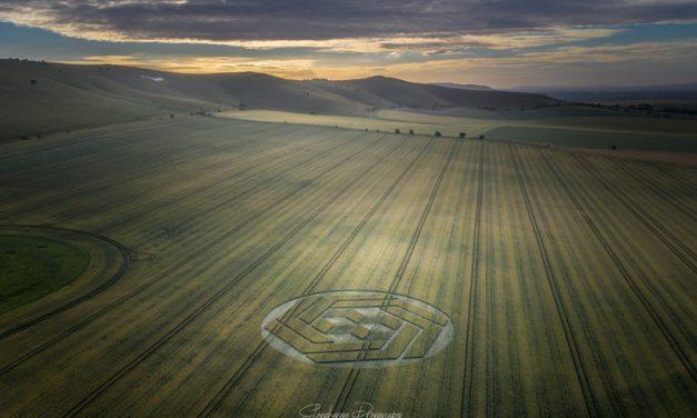 2020 Circles: Stanton St Bernard, Wiltshire