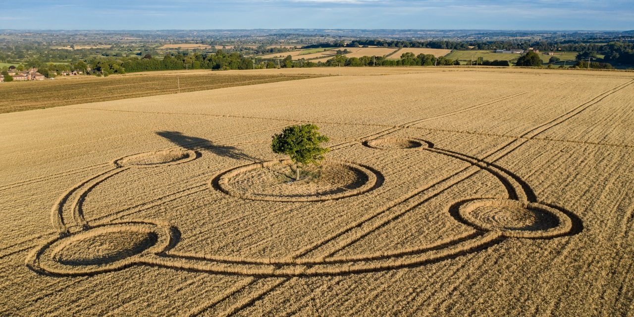 2020 Circles: Potterne (2), Wiltshire