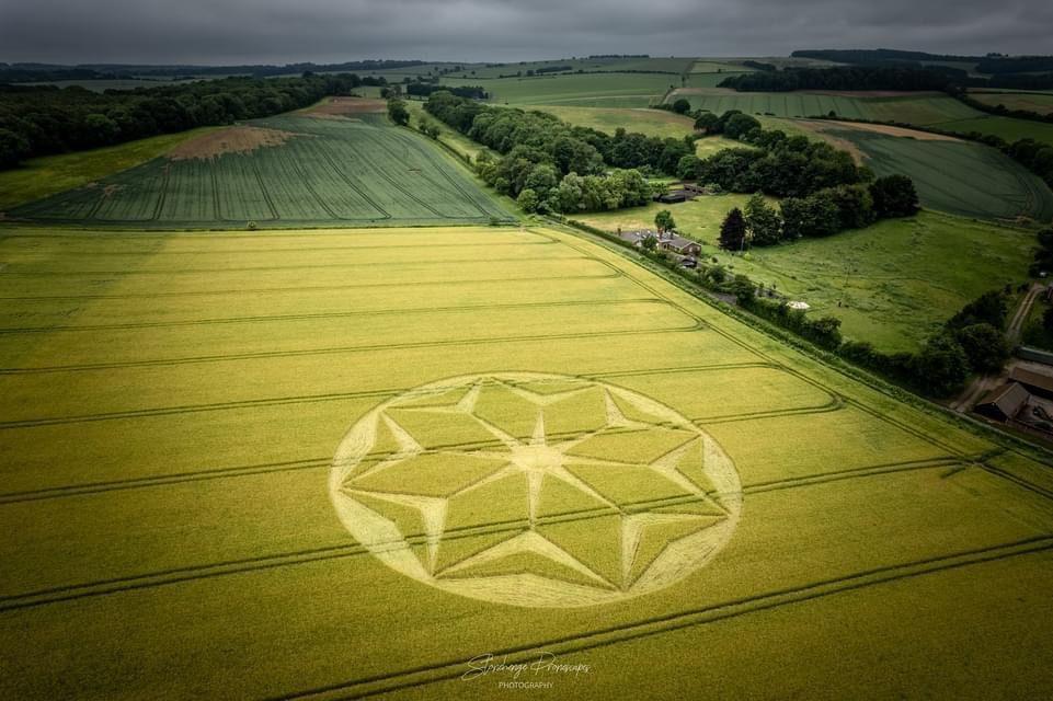 2021 Circles: Rodfield Lane, Winchester, Hampshire