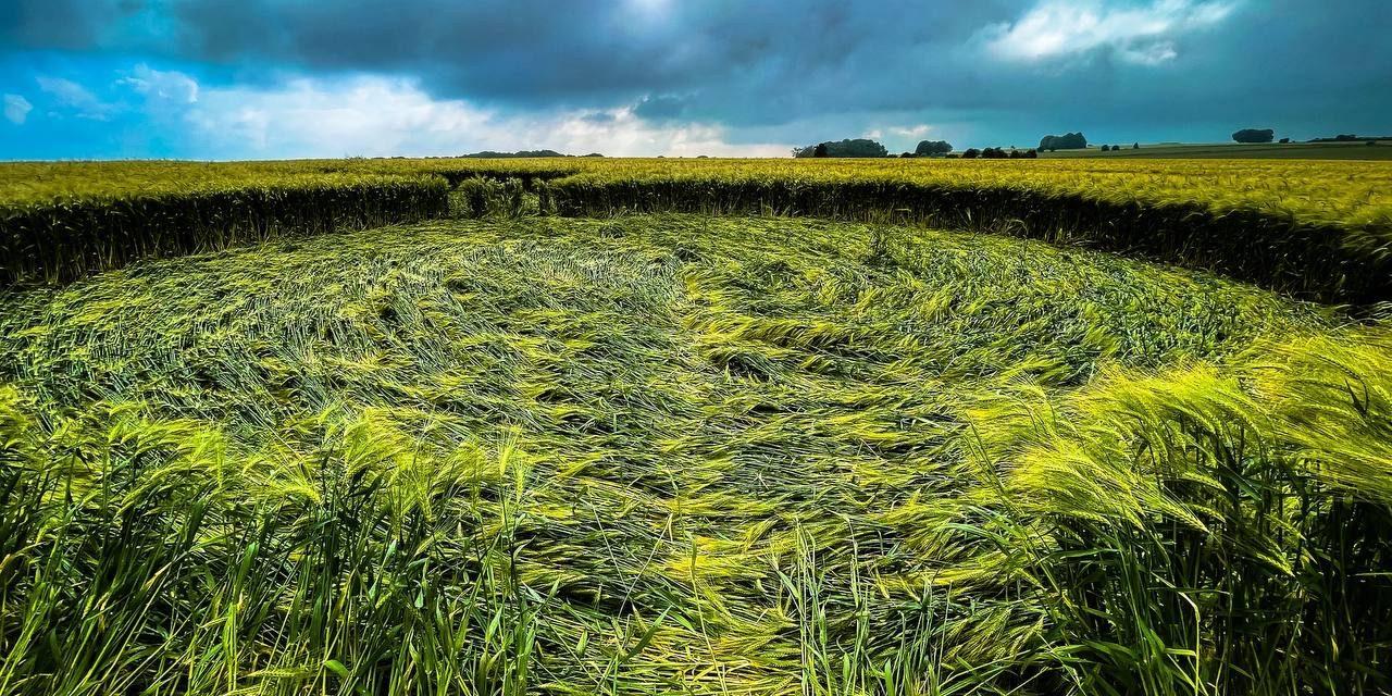 Tidcombe Long Barrow Ground Shots